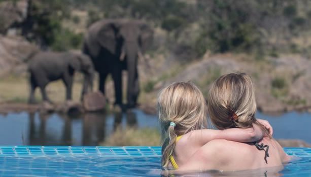 Big Five Family Safari Package at Four Seasons Safari Lodge Serengeti