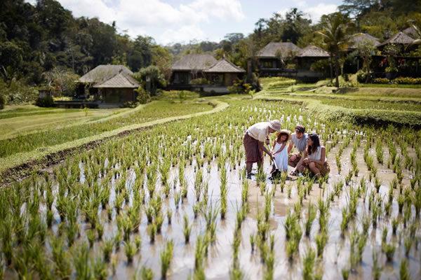Family Activities at Mandapa Camp - ©Mandapa, a Ritz-Carlton Reserve