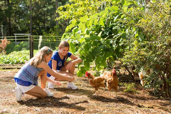 Kids at the Farm - ©The Ritz-Carlton Orlando, Grande Lakes