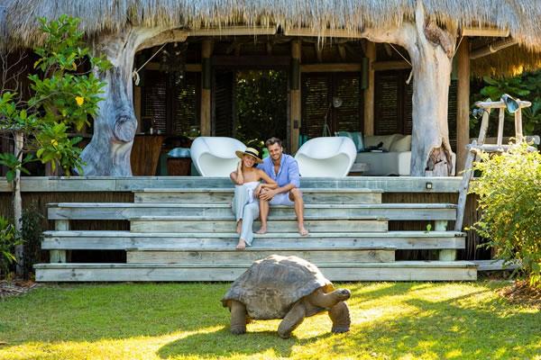 Aldabra the Giant Tortoise -©North Island, a Luxury Collection Resort, Seychelles