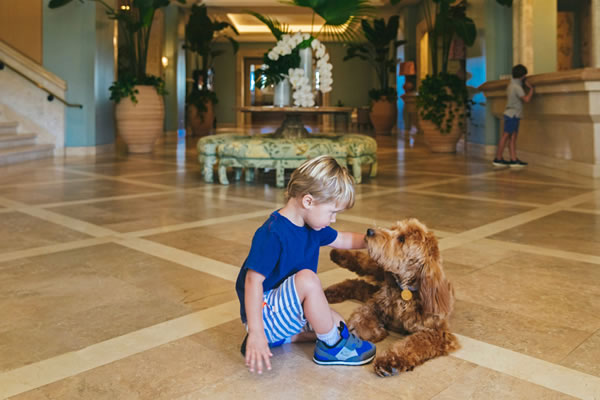 Four Seasons Resort Palm Beach Welcomes Therapy Dog into Family