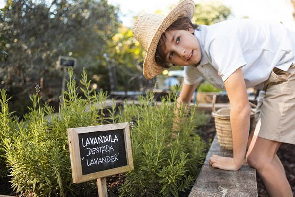 Mini Gardeners -©Marbella Club Hotel