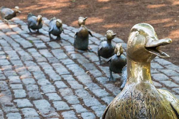 Duck Tour - ©The Ritz-Carlton, Boston