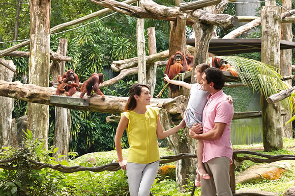 Wildlife Adventure Playcation at Shangri-La Hotel, Singapore