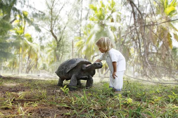 ©Four Seasons Resort Seychelles at Desroches Island