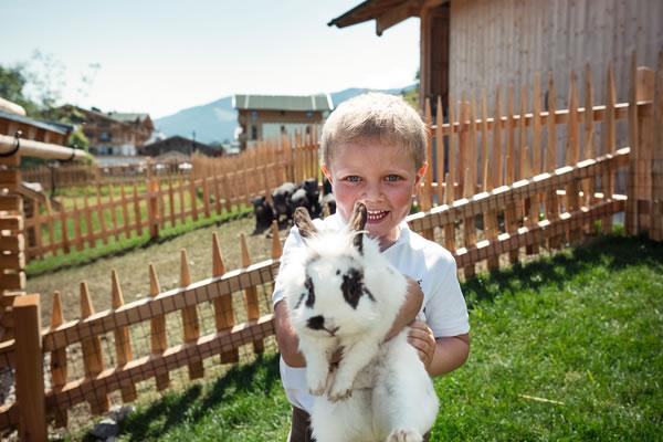 Farm Animals -©Forsthofgut