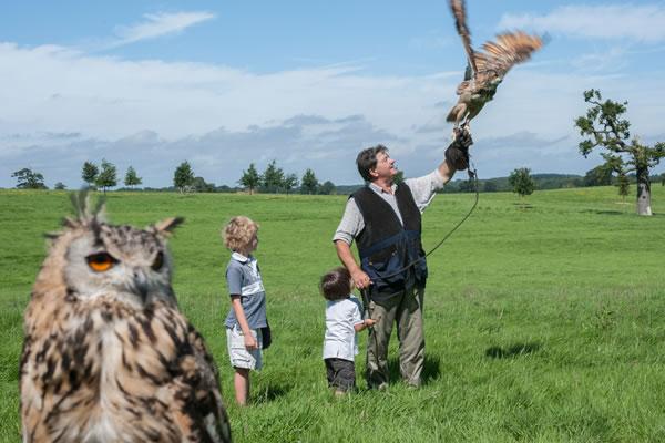 Birding Activity - ©Four Seasons Hotel Hampshire