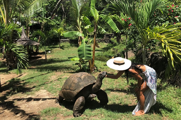 Meet a Tortoise ©Shangri-La's Le Touessrok Resort and Spa Mauritius