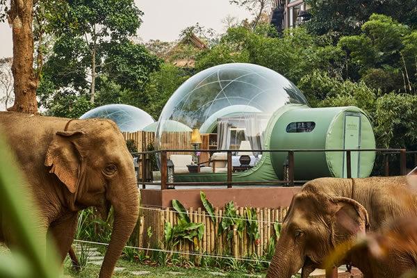 Jungle Bubble ©Anantara Golden Triangle Elephant Camp & Resort